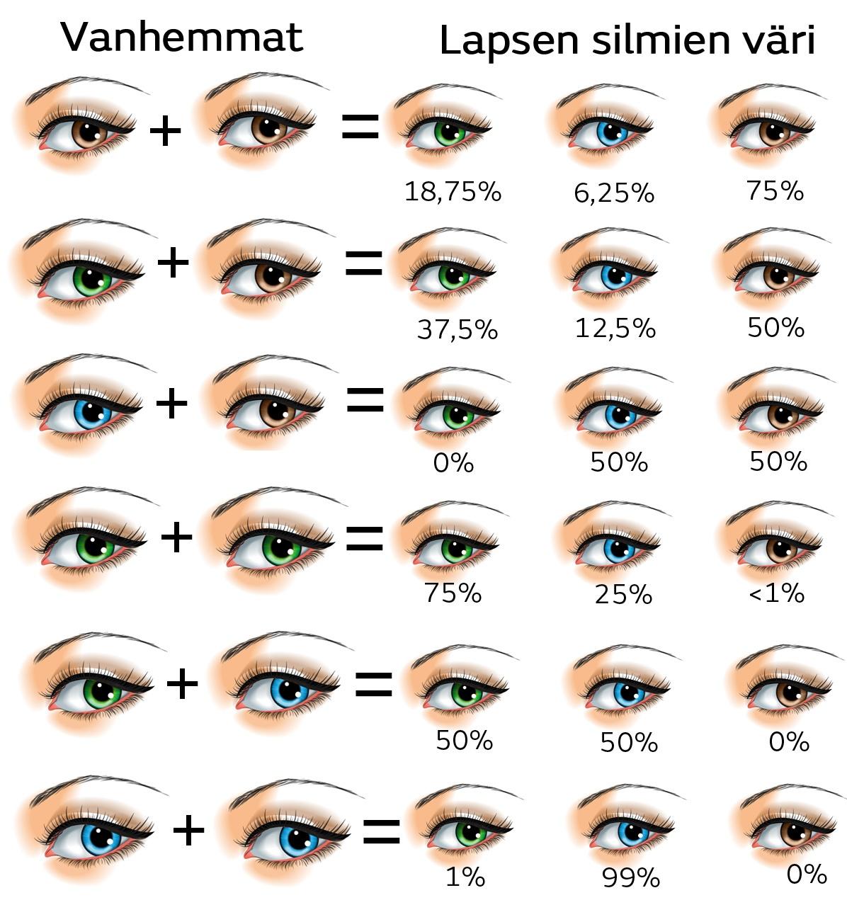 Minkä väriset silmät lapsi saa