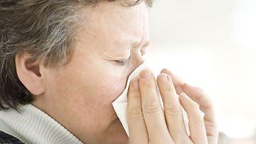 Elimistö pukkaa kuonat pihalle flunssassa.