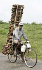 Paikallinen mies kuljettaa polttopuita pyörällään.