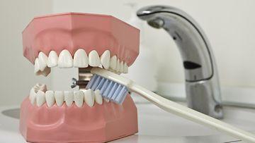 Moni välttelee hammaslääkärikäyntejä.