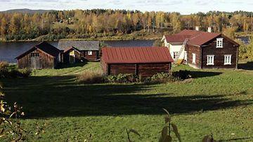 Maatalouslomittajana työskentelevä Aulikki käy säännöllisesti jäsenkorjaajan pakeilla.