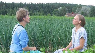 Ekokylän asukkaat Marjaana Heinonen (vas.) ja Jaana Kuusela kasvimaalla.