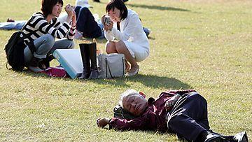 Mies nokosilla Tokion puistossa.