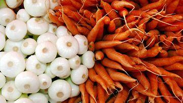 Porkkana on hyvä A-vitamiinin lähde. Kuva: Lehtikuva