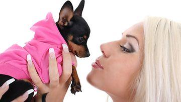Pidätkö sinä koirasi kytkettynä koirapuistossa?