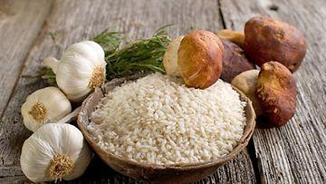 Sienireseptit ovat usein nopeita ja helppoja valmistaa.