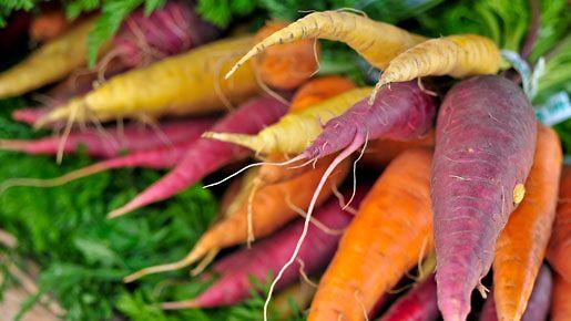 Porkkanoiden värikirjo.