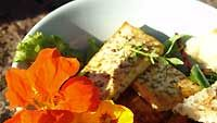 Lämmin tofu-tomaattisalaatti