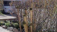 Valmis bambuasetelma