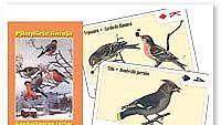 Kalatalouden keskusliitto julkaisi lintukortit.