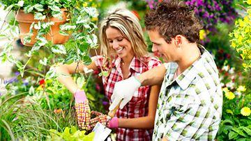 Puutarhanhoito on pariskuntien yhteinen harrastus.
