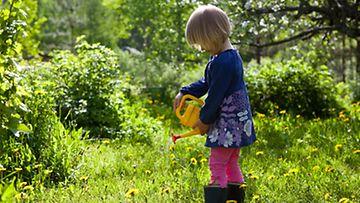 Kaunis luonto opettaa lasta.