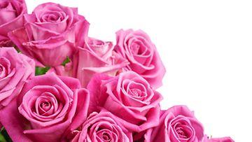 Ruusut ovat kestosuosikkeja.