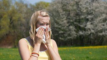Allergialääkkeitä on napsittava säännöllisesti, jotta oireet vähenevät.