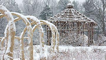 Kesän vehreys muuttuu talvella upeaksi taideteokseksi.