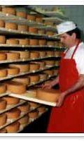 Juustoportin juustokellari