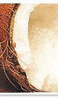 kookos