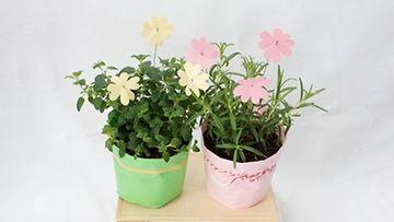 Pastelliset sävyt sopivat vihreiden yrttien kukiksi.