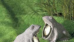 sammakkovalaisimet