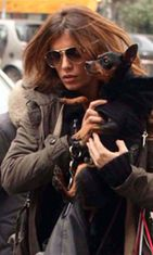 Koirat ovat Elisabettan vauvoja.