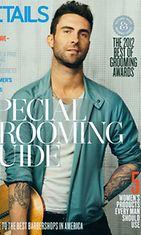 Adam Levineä hehkutetaan popin uudeksi kuninkaaksi Details-lehdessä.