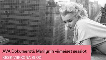 AVA Dokumentti: Marilynin viimeiset sessiot