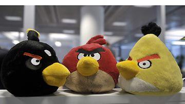 Vihaiset linnut ovat ihastuttaneet maailmalla.
