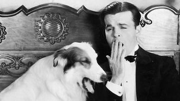 Selvityksen mukaan koira haukottelee samalla kuin omistajansa.