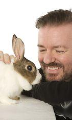 Ricky Gervais poseerasi kanin kanssa hyväntekeväisyyttä varten