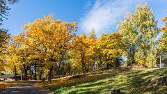 Lokakuun pitkä ennuste: Jatkuuko syksy lämpimänä vai kylmänä?