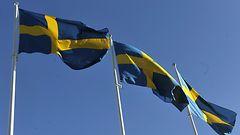 Ruotsalaistutkija: Ruotsi valmis puolustamaan naapureitaan