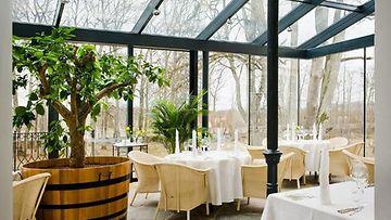 Ravintola Alexander on Viron paras ravintola