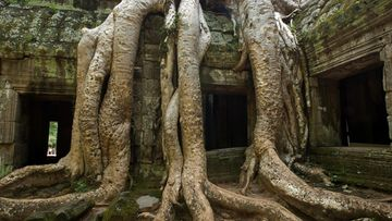 AngkorWat_getty.jpg