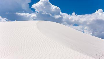 whitesands_nemexico_colourbox.jpg