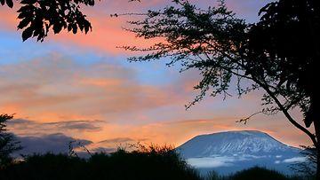 kilimanjaro_Colourbox.jpg