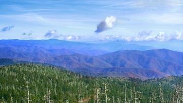 Appalachian_GreatSmokyMountains_CB.jpg (1)