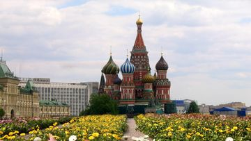 Moskova gerberalabyrintti