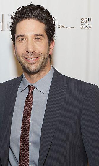 David Scwimmer 2013
