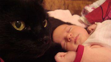 """Musu-kissa: """"Jouluna 2012 20-vuotias Musu ja 1kk Victoria-vauva."""" Kuva: Nina Porttinen"""