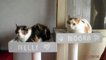 """Nelli ja Noora: """"Mörököllit."""" KUva: Kirsti Komonen"""