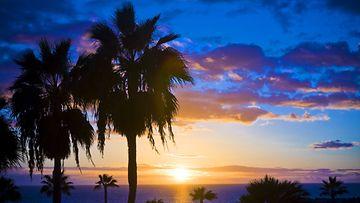 Gran Canarian rantamaisemaa yöllä.