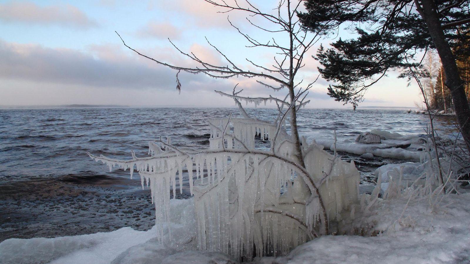 Tammikuun Sää
