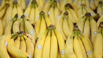 Banaaneja Aucklandissa vuonna 2010.