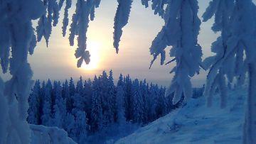 Joulukuvia Suomesta