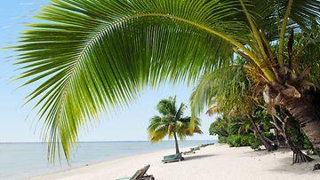 Kuva Aitutaki-saarelta