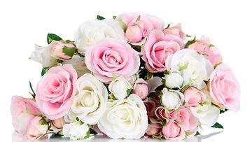 Vaaleanpunaiset ruusut voivat kertoa salatuista tunteista tai ihastumisesta.