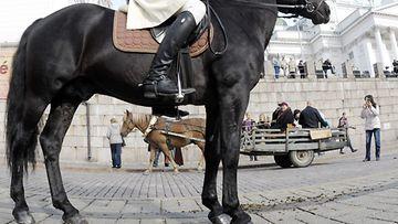 Ensimmäienn Autonomian aika -festivaali järjestettiin Helsingin keskustassa lauantaina 22. syyskuuta 2012. Näyttelijä Ville Virtanen toimi festivaalien seremoniamestarina. Virtanen ratsasti Senaatintorille kenraalikuvernöörin adjutantin Anton Cronstedtin hahmossa.
