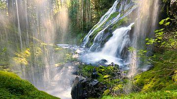 Vesiputous metsässä.