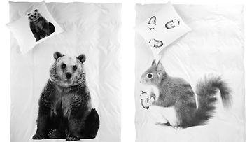 Unten maahan karhun tai oravan kainalossa. Kuvat: Elllos