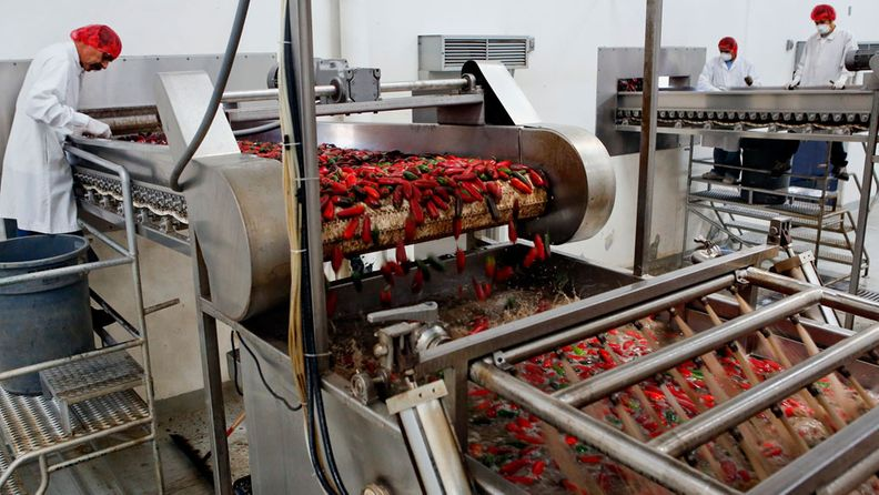 Chilien käsittelyä Huy Fong Foods -tehtaalla.